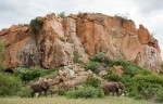 10 Interesting Mapungubwe Facts