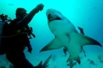 10 Interesting Marine Biologist Facts