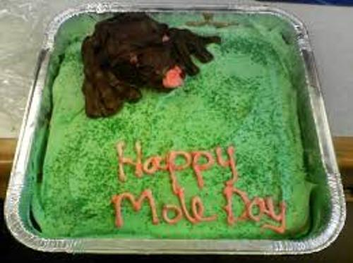 Mole Day Facts