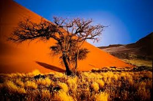 Namibia Beauty