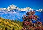 10 Interesting Nepal Facts