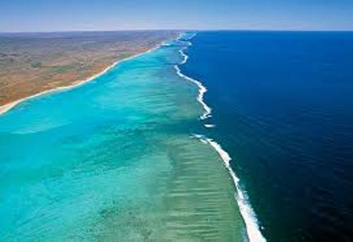 Ningaloo Reef Facts