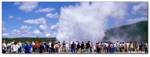 Old Faithful Visitors