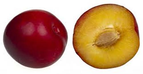 Plum Facts