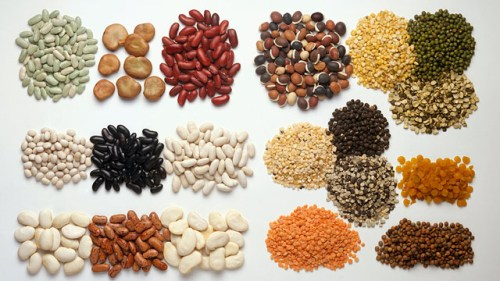 Protein Seeds