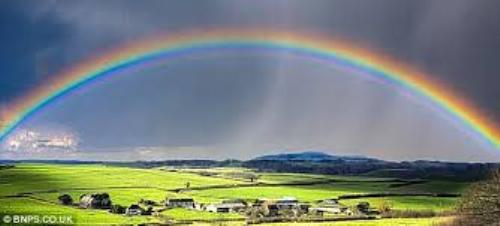 Facts about Rainbow