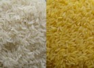10 Interesting Rice Facts