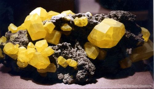Rocks and Minerals in Yellow
