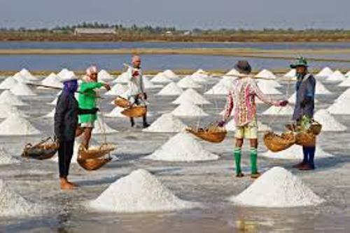 Salt Production