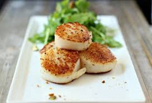 Scallop Food