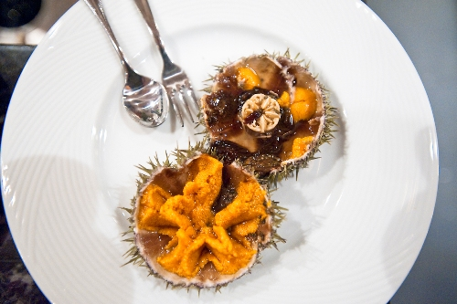 Sea Urchin Food