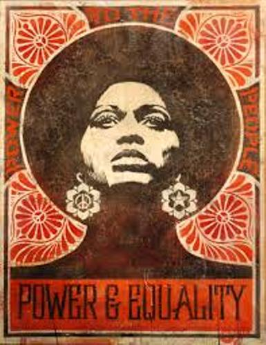 Shepard Fairey Facts