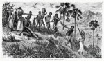 10 Interesting Slave Trade Facts