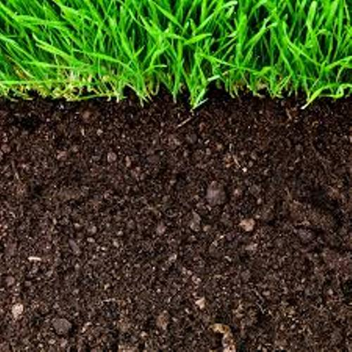 10 interesting soil facts my interesting facts for Meaning of soil resources