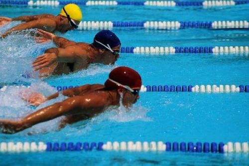 Facts about Swimming in The Olympics