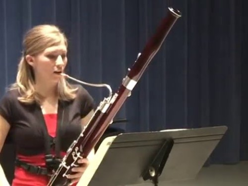 Bassoon Facts