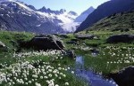 10 Interesting the Alps Facts