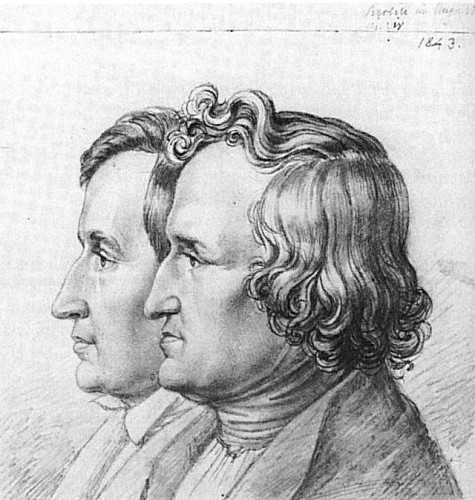 Facts about The Brothers Grimm