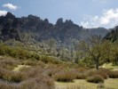 10 Interesting the Chaparral Biome Facts