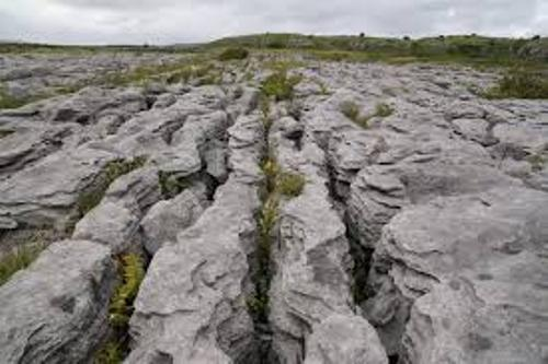 The Burren Facts