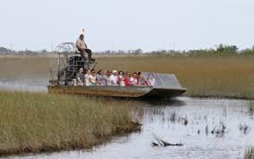 Florida Everglades Images