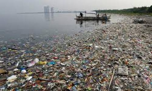 Great Pacific Garbage Patch Pic