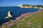 10 Interesting the Isle of Wight Facts
