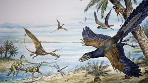 The Jurassic Period Pictures