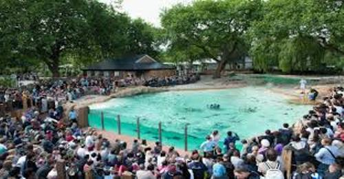 London Zoo Image