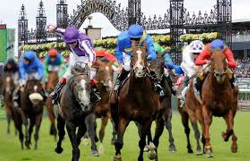 The Melbourne Cup Facts