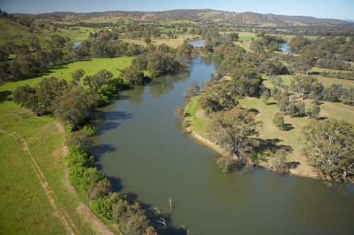 The Murray River Pic