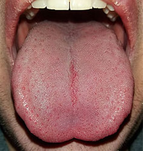 facts about tongue
