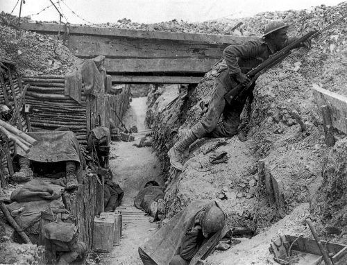 the trenches in world war 1 facts