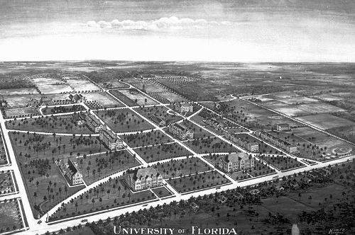 University of Florida Image